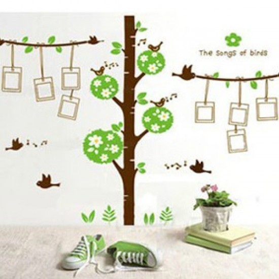 The Songs of Birds with Photo Frames Wall Decal